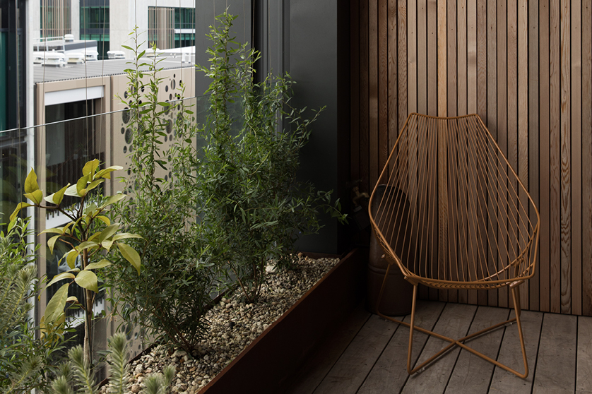 Patio gardens Grey Lynn Auckland | Branche Landscapes