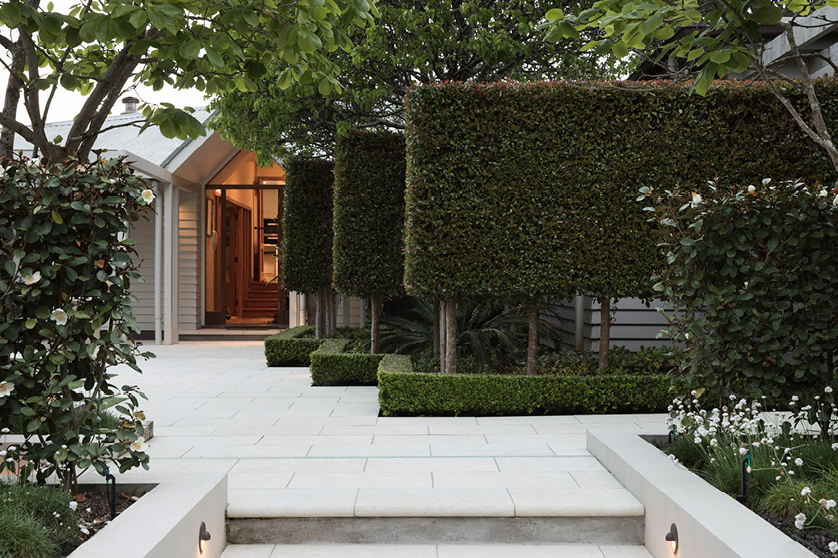 Landscaping Takapuna Auckland | Branche Landscapes